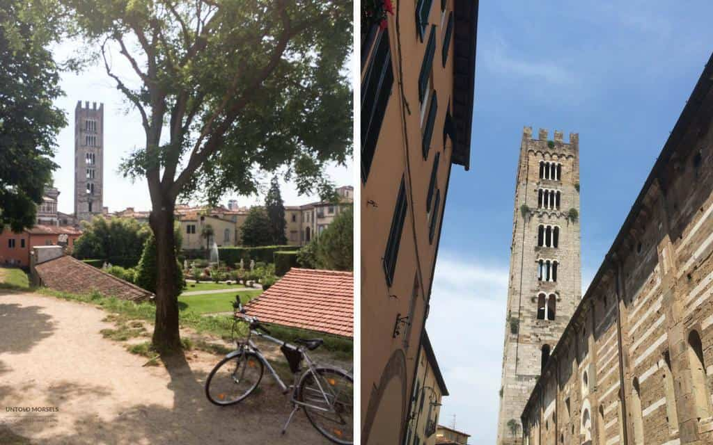 Things to do in Lucca - the towers or torre of Lucca
