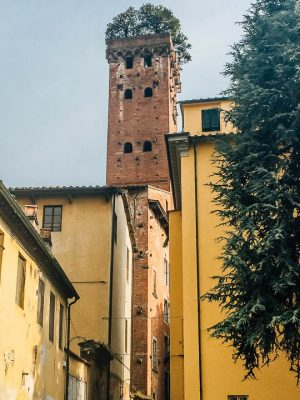 lucca attractions - torre guinigi