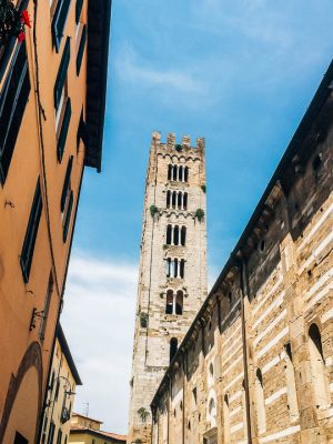 lucca things to do - explore the torre - towers of Lucca