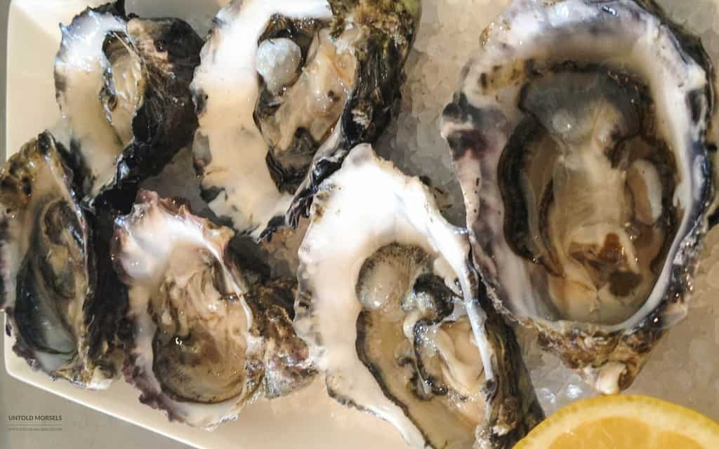 trip to Hobart - Bruny Island oysters