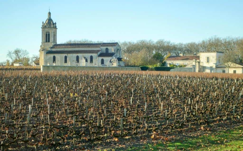Bordeaux wine tour vines and chateaux