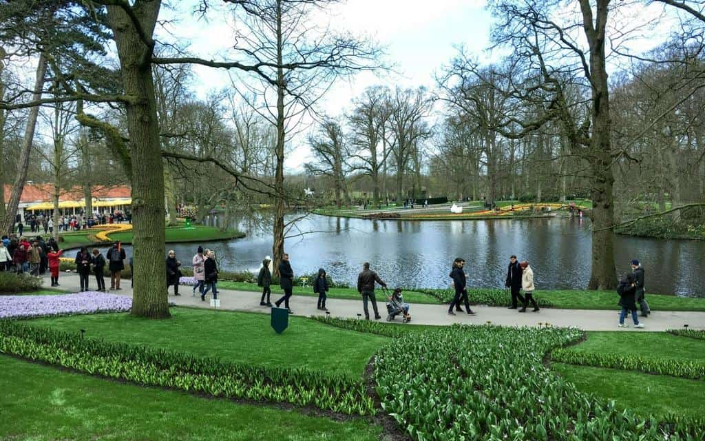 wandering around keukenhof netherlands