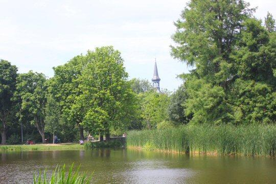 Amsterdam-vondelpark-trees-lake-view