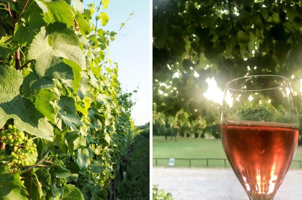 Brescia wine regions