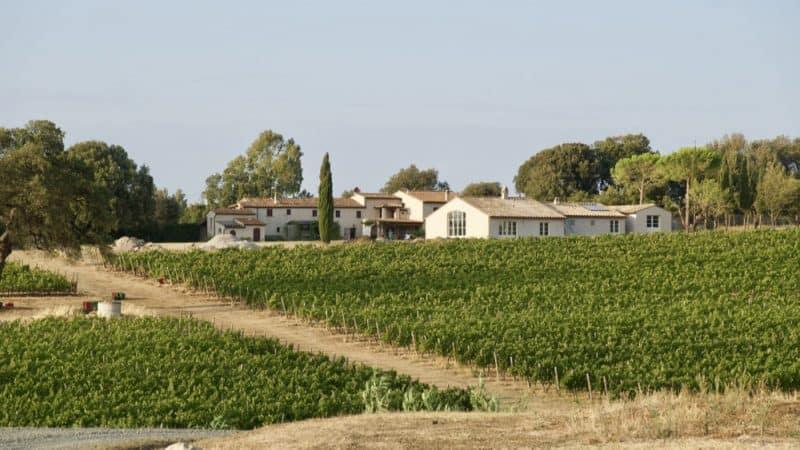bolgheri - towns in tuscany italy