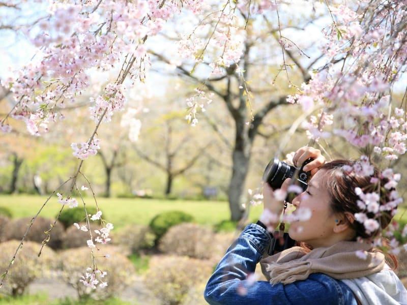 taking photos in japan