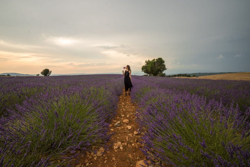 valensole - small towns in france
