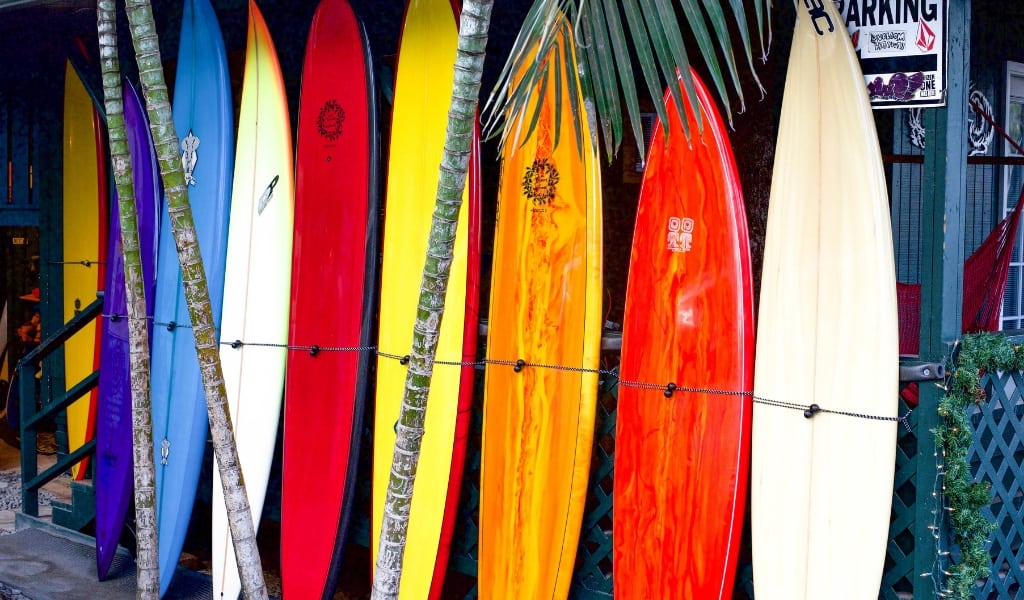 Top 10 things to do: North Shore Oahu