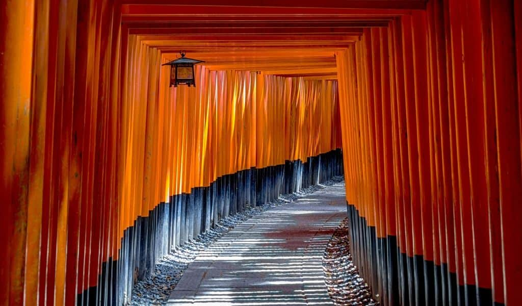 fushimi inari shrine kyoto - top places to see on a 2 day trip to kyoto