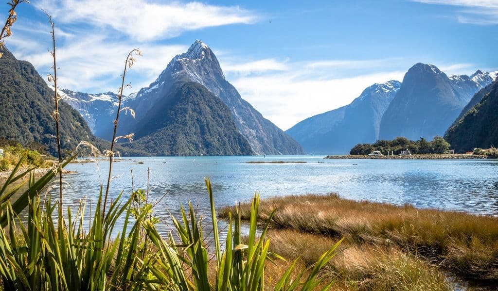 fiordland - best things to do in the south island new zealand