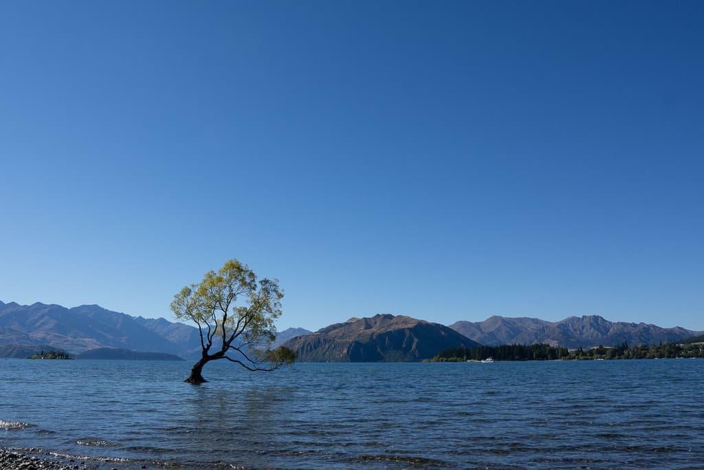visit wanaka - things to do south island new zealand